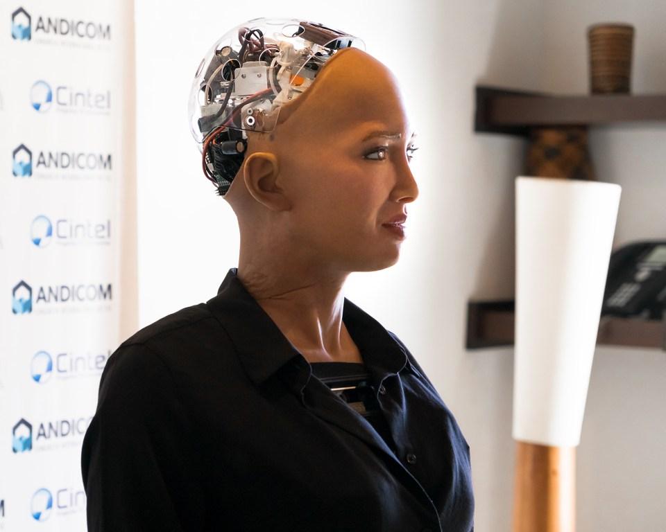 Sophia habla durante un evento de medios en Andicom 2018 en Cartagena, Colombia. (Crédito de la foto: Jared Wade)